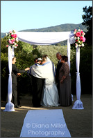 Jewish Wedding Celebration at Sunstone Winery, Santa Ynez, CA